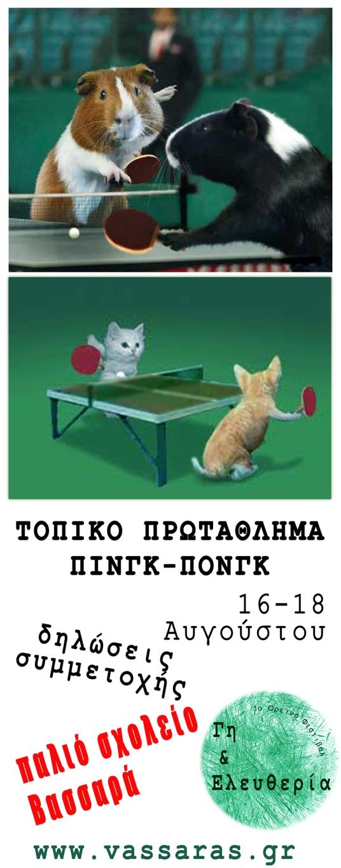 ping pong ο ορεινο φεστιβαλ 2013